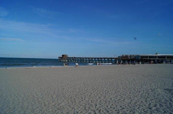 Best Western Ocean Beach Hotel & Suites : Cocoa Beach Pier from the beach behind Best Western