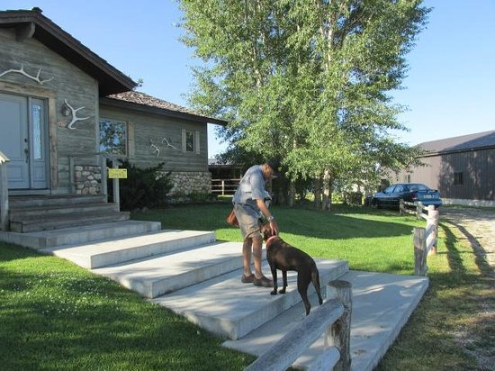 Morley's Acres Farm and Bed & Breakfast: With the dog