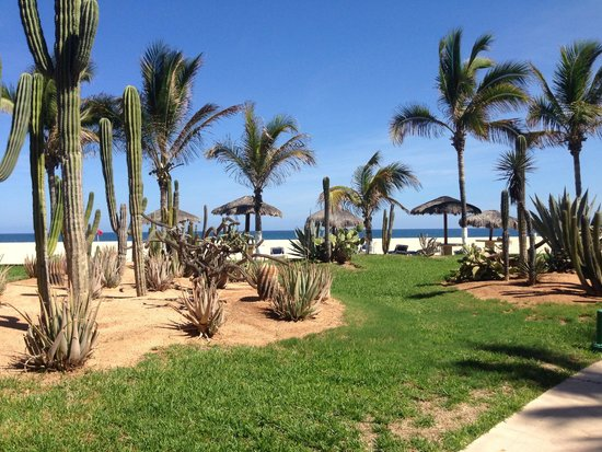 Holiday Inn Resort Los Cabos All-Inclusive: Grounds