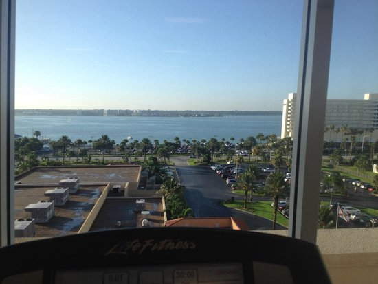 Sheraton Sand Key Resort: View from the treadmill.
