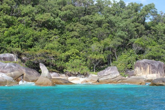 Fitzroy Island Resort: from the glass bottom boat