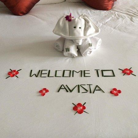 Novotel Phuket Kata Avista Resort and Spa: Check in
