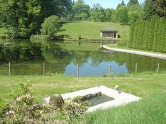 Arboretum du château de Neuvic d'Ussel : vue du lac du parc et de la volière (aujourd'hui espace de repos)