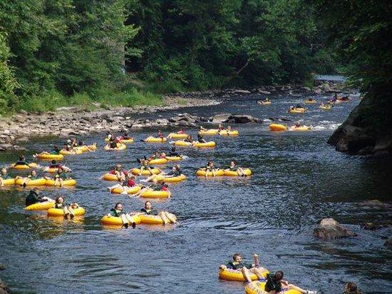 Rainbow River: Tubing 3