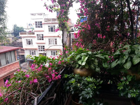 International Guest House: View 3
