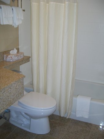 Howard Johnson Jamaica NY Near Airtrain JFK: bathroom