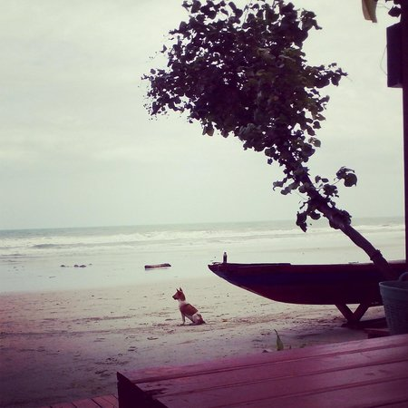 Mac Resort Hotel: Aliya