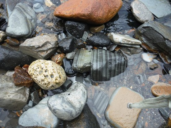 Abalone Cove Shoreline Park & Ecological Reserve: Sacred Cove...You rock!