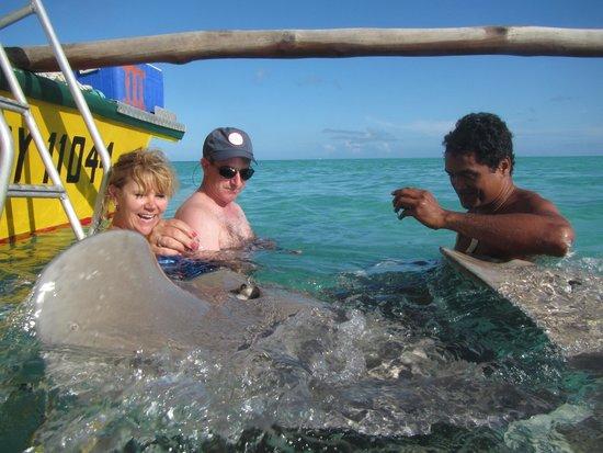 Maohi Nui : Ray feeding
