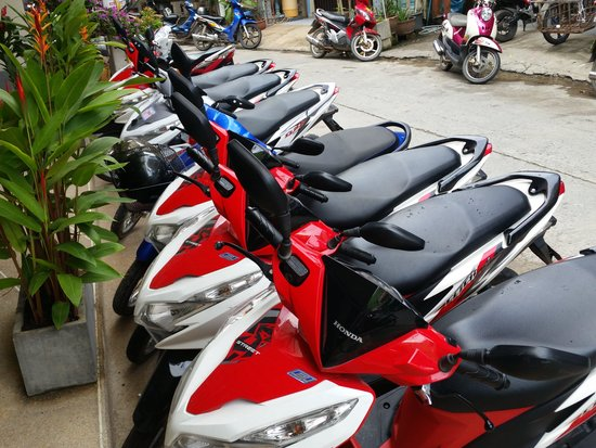 Patong Mansion Hotel : Mopeds available from front desk