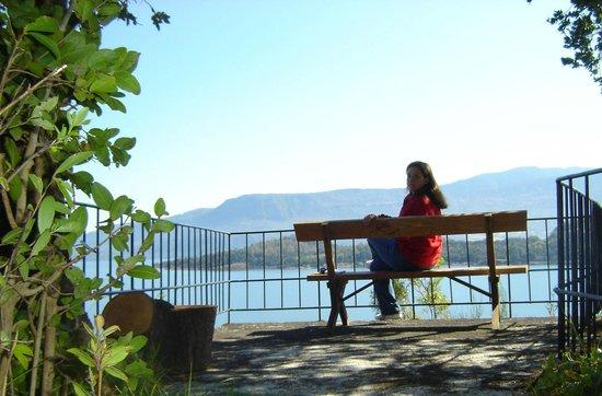 Hotel Antumalal: Mirante nos jardins