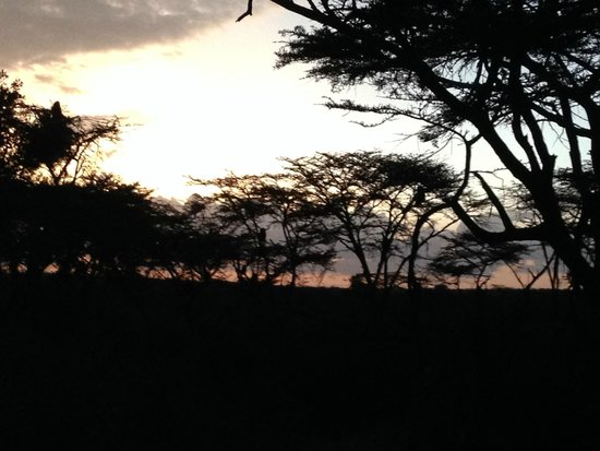 Naboisho Camp, Asilia Africa: Sunset