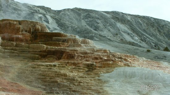 Mammoth Hot Springs: 11