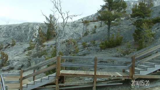 Mammoth Hot Springs: 2