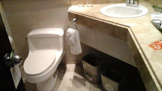 Radisson Hotel San José Costa Rica: Bathroom.