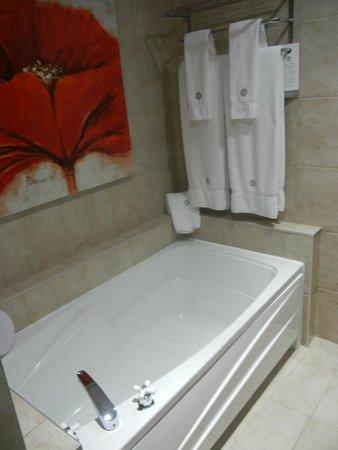 Hôtel des Coutellier : Bath
