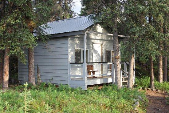 The Perch Resort: Cabin 5