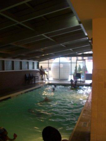 Sheraton Brooklyn New York Hotel : pool