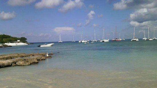 Isla Saona: Bayahibe