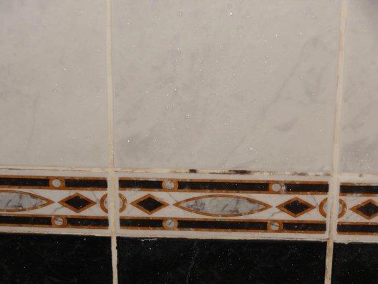 Fitzpatrick Castle Hotel Dublin: Moldy Shower