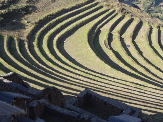 Private Tours Peru : the best agricultural terraces in the   Sacred  Valley of  The  Incas  .  David Expeditions Peru