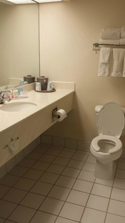Hampton Inn Amelia Island at Fernandina Beach: Bathroom with lots of counter space