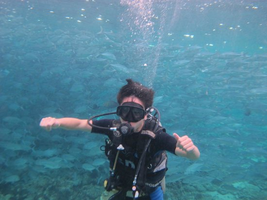 Seaventures Dive Rig: Daniel with big school of jacks