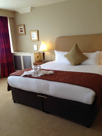 Clyde Court Hotel : Our beautiful room