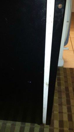 Howard Johnson Vicksburg: Mildew on fridge door seal is also inside