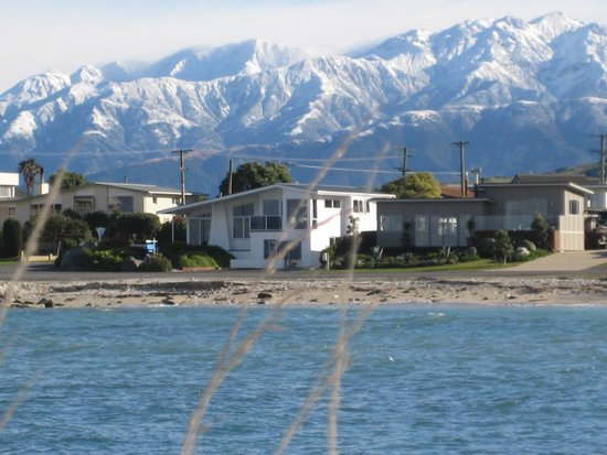 Photo of Absolute Waterfront Kaikoura
