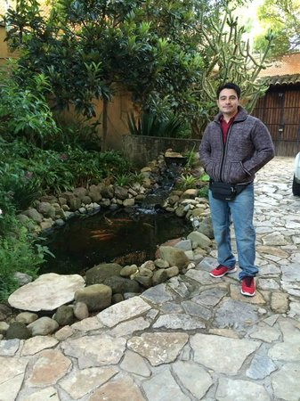 Guayaba Inn: on the backyard