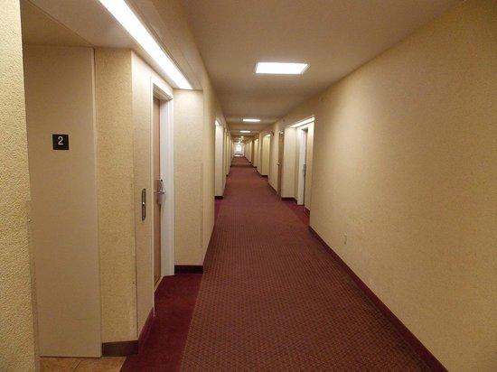 Parkfield Inn Warsaw: Hallway