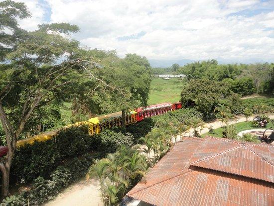 Parque del Café: El tren