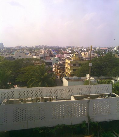 Savera Hotel: View of the city (and what appears to be an herb garden)
