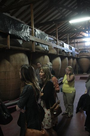 Gourmet Madrid Tours: winery