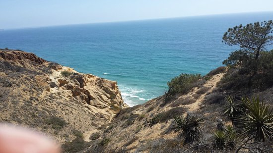 Torrey Pines State Natural Reserve: Nice view