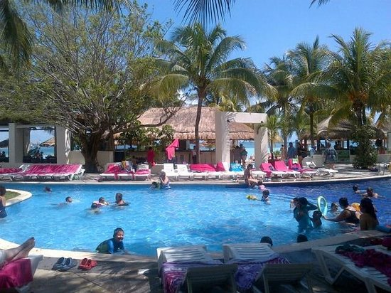 Oasis Palm: Picture of the pool area