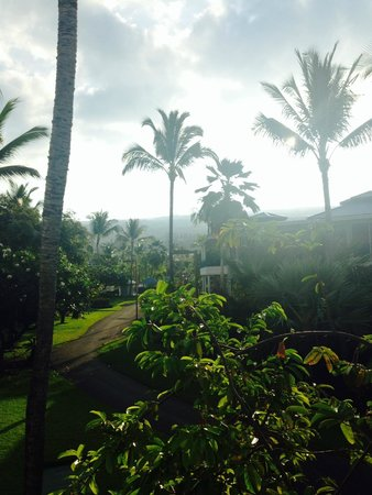 Holua Resort at The Mauna Loa Village: Beautiful view