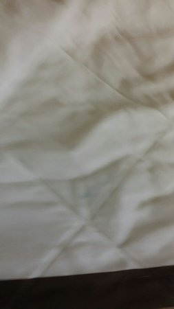 Extended Stay America - Denver - Aurora South: Blue stains all over comforter