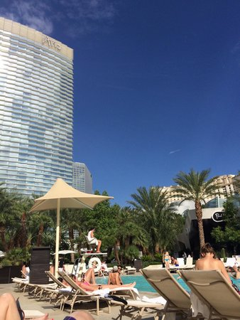 ARIA Resort & Casino: pool by the bar