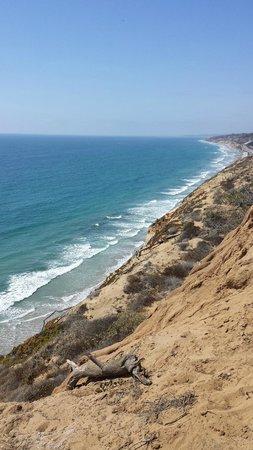 La Jolla Shores Park: View from up top of La Jolla