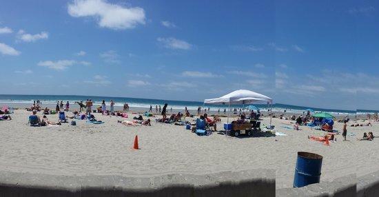 La Jolla Shores Park: Nice sand and beautiful beach