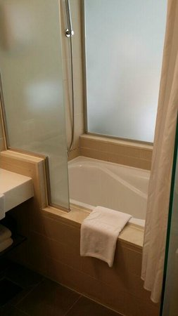 Nine Tree Hotel Myeong-dong : Bathroom with tub (its a room for 3 pax)