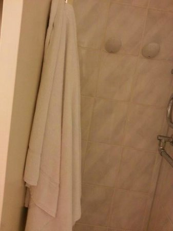 Holiday Inn Amsterdam: Dirty bed sheets and dirty bathroom