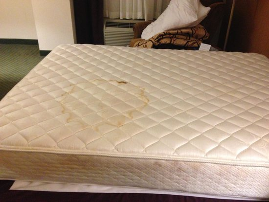 Drury Inn & Suites West Des Moines: Both beds are covered in stains all the way through.