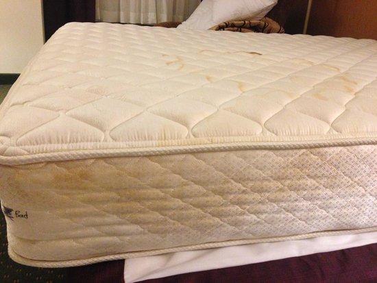 Drury Inn & Suites West Des Moines : Mattress