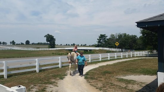 Kentucky Horse Park : Younger children can ride a pony or a horse in a small circle with staff leading them.