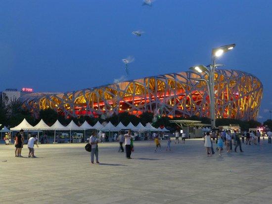 Olympic Park: Le nid d'oiseau