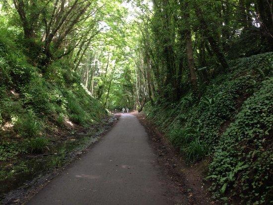 Weymouth Portland Railway Walk: A view