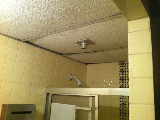 Extractores De Baño Para Falso Techo:en el techo falso de el baño se escuchan las ratas – Picture of